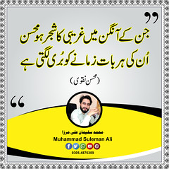 Muhammad Suleman Ali