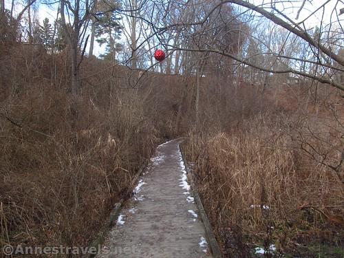 The Christmas ball above the boardwalk in Corbett's Glen, Penfield, New York