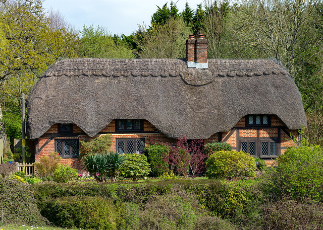 Thatched Cottage, Brook, New Forest, Hampshire, UK