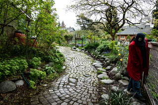 Seattle Tilth Alliance gardens | by CAJC: in the PNW