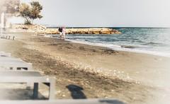 Liamssol Seaside (2)