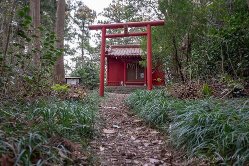 2019 南三陸町 宮城県 荒島 荒島神社 鳥居 本吉郡 日本 japan miyagi fujifilmx70 shrine