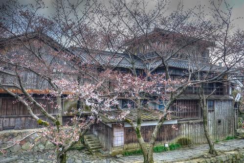 03-04-2019 Ohmi-Hachiman, Shiga pref  (38)