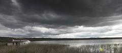 Laguna del Gosque