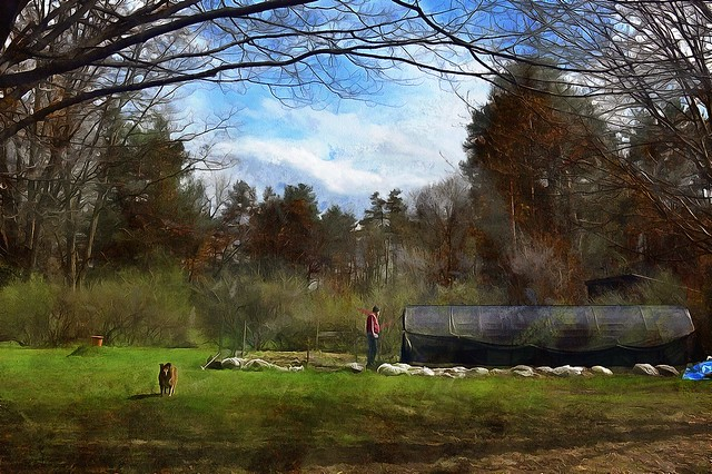 A View With A Backyard!-HSS