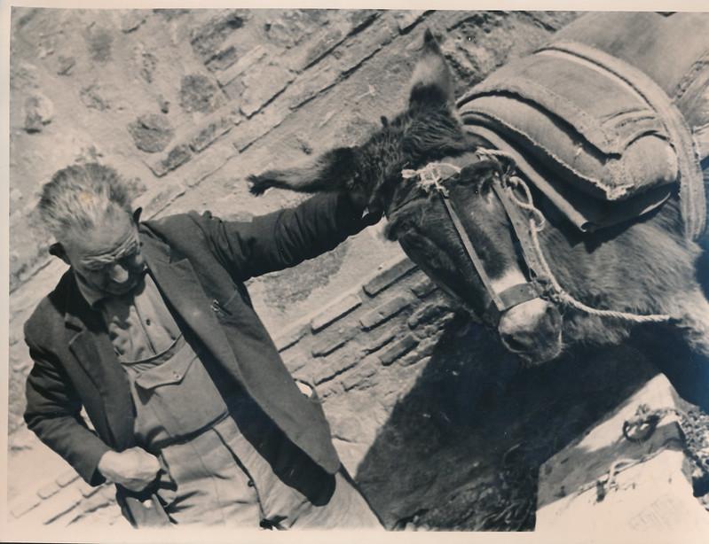 Un burro y un arriero junto a las Torres de la Reina a mediados del siglo XX. Fotografía de Victoriano de Tena Sardón