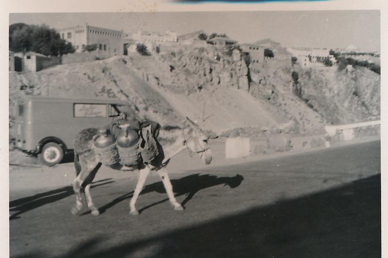 Un burro junto al puente de San Martín a mediados del siglo XX. Fotografía de Victoriano de Tena Sardón