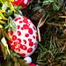 DSCF7767 – Happy Easter / Frohe Ostern!