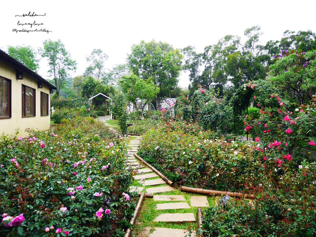 苗栗旅遊免費好玩景點推薦雅聞香草觀光工廠花園 (3)