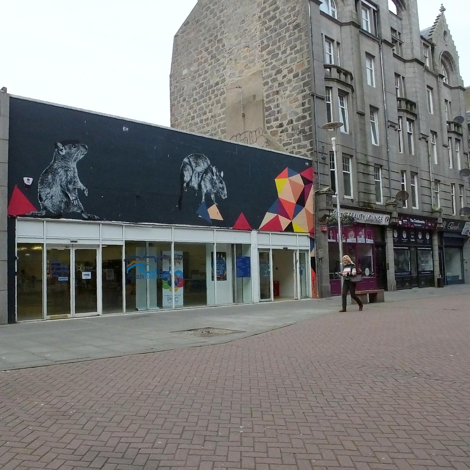 Nuart Aberdeen 2019: Hama Woods