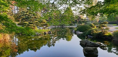 frühling spring wasser water bäume trees japanischergartendüsseldorf japanese garden dusseldorf japanesegardendusseldorf garten nrw landschaft landscape