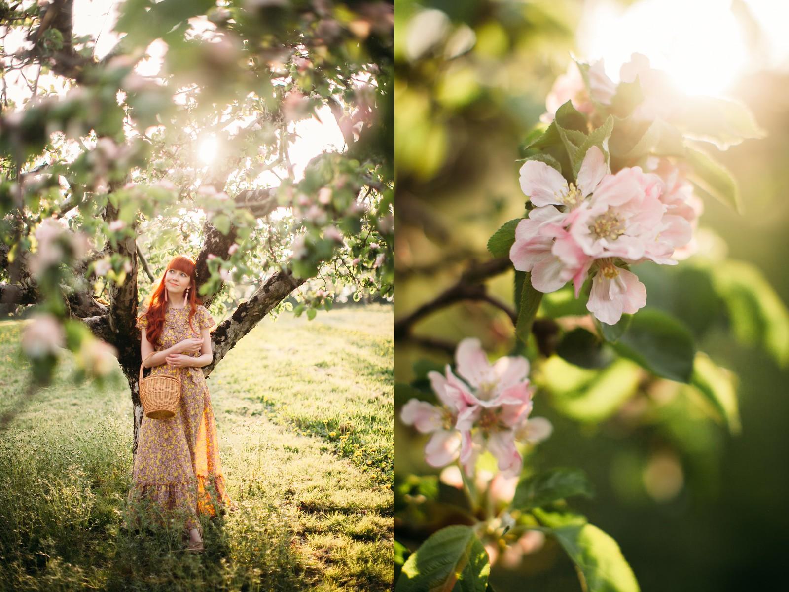 apple blossom-33-side