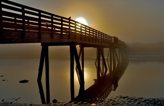 Foggy Dawn Footbridge