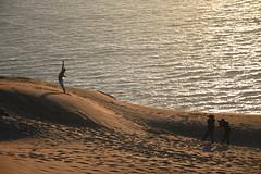 Danza en la Duna de Concón