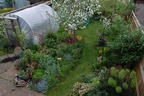 Looking Down on the Back Garden - April 2019