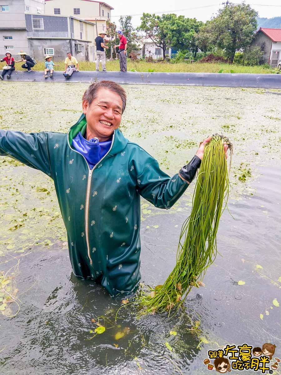 高雄一日農夫趣-美濃李氏水蓮-7