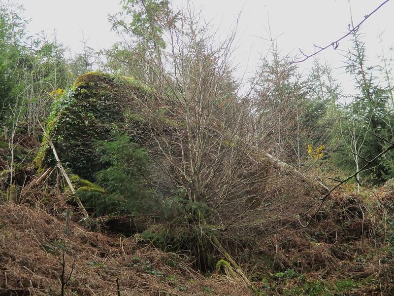 Brimpts Rocks in Northern Wood (large pyramid)