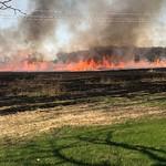 Prairie Burn3