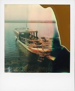 Burmese failaroids (Irrawaddy river, Bagan, Burma) | by @necDOT