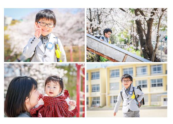 桜満開の時期の小学校入学式 校庭で新一年生の男の子の写真撮影