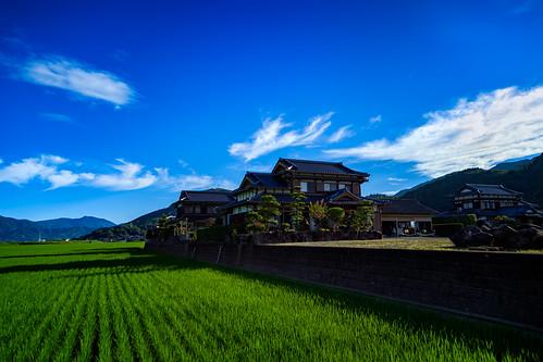 a7iii inaka kyushu rice landscape sony field green house mountains takeo farm sunrise uchi japan clouds takeoshi sagaken