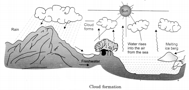 Water Class 6 Notes Science Chapter 14 3