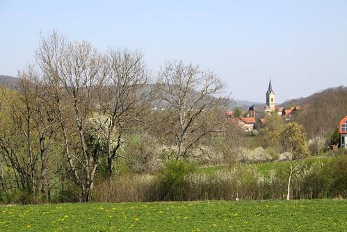 Jena 031