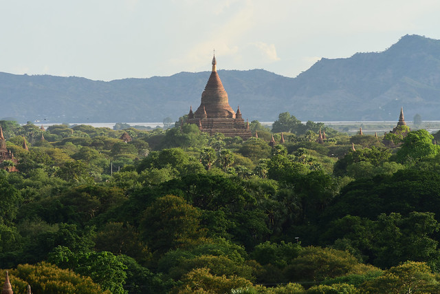 Bagan, Myanmar (Birmania) D810 2081