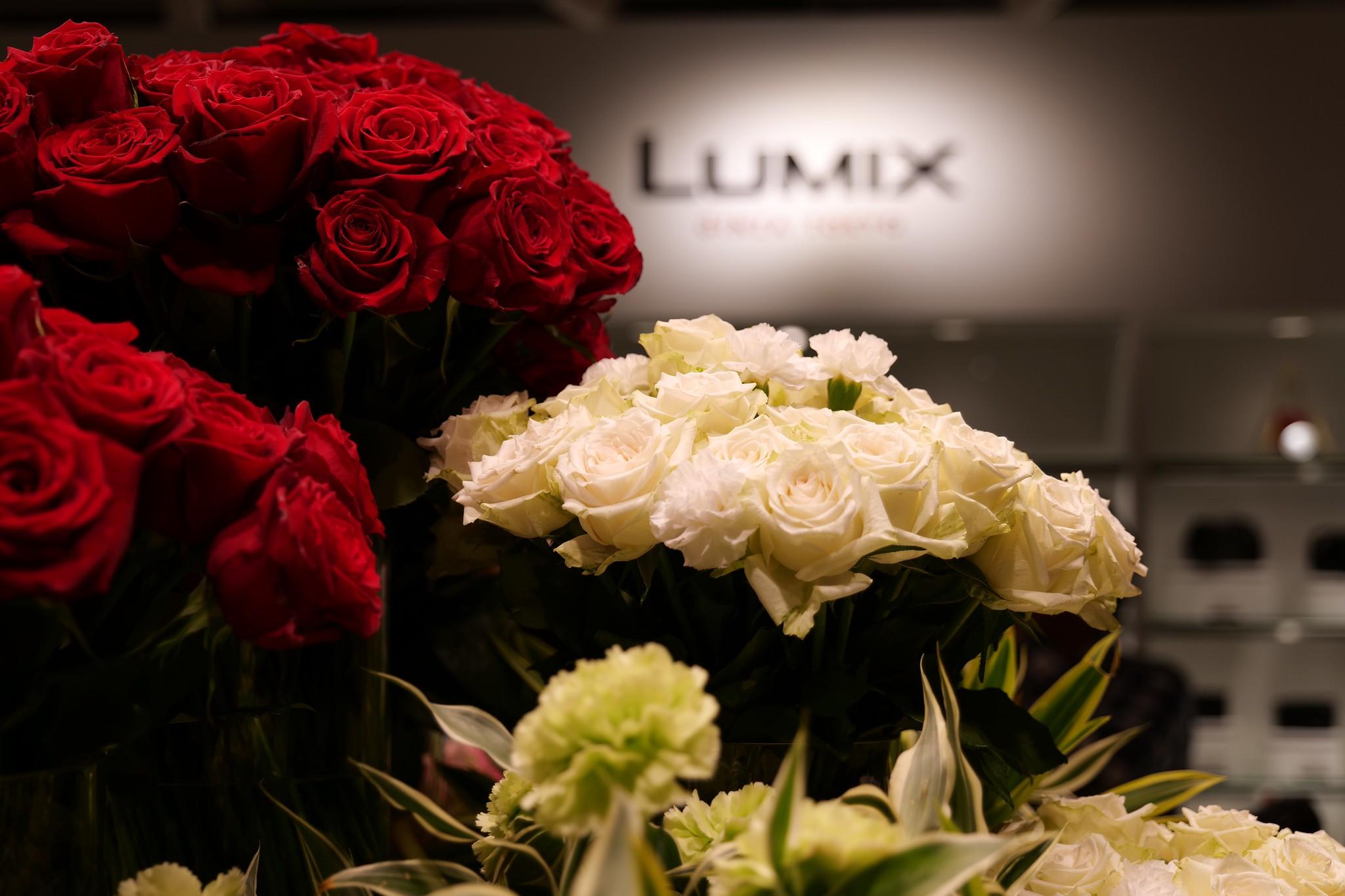 Panasonic LUMIX S1  24-105