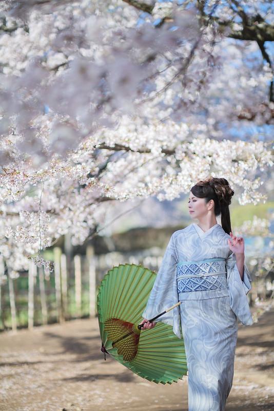 Spring scenery of Japan