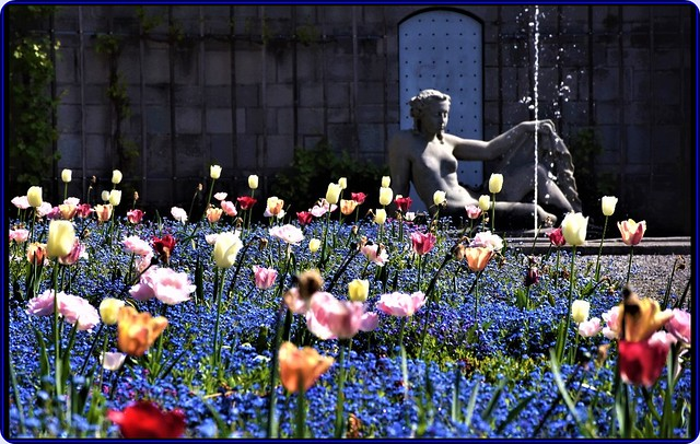 Spring in Zurich-1
