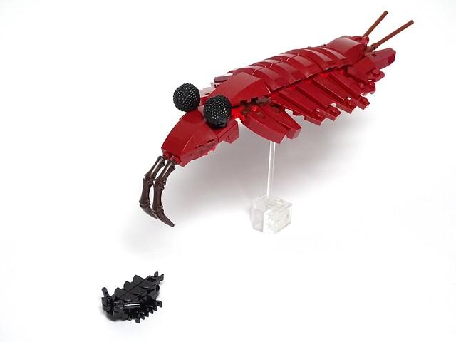 Cambrian LEGO Creatures: Anomalocaris Hunting a Trilobite