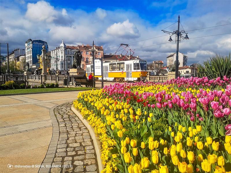 2019 Europe Sofia