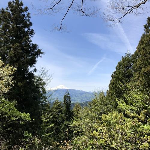 2019.4.28陣馬山〜高尾山縦走 景信山から望む富士山