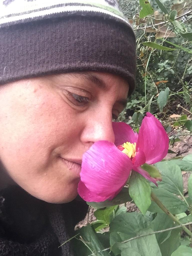 Wild Peonies (Paeonia mascula) and Ayala Moriel