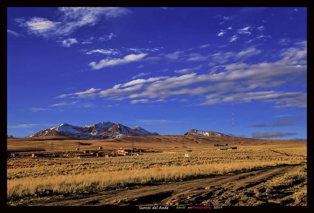 Surcos del Ande