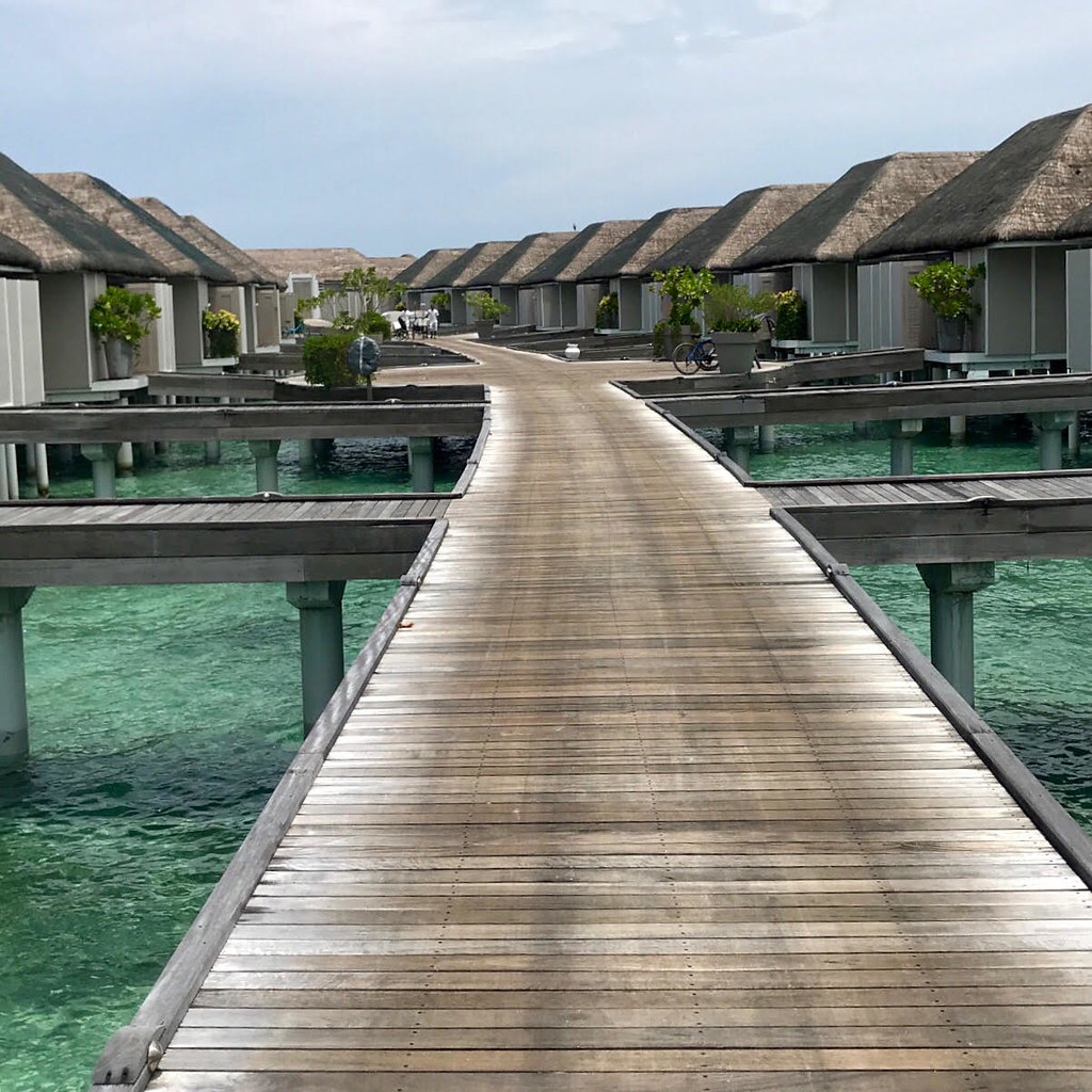 maldives 36 (edit)