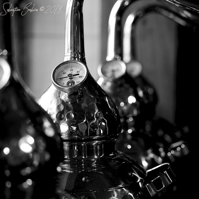 Distillerie Straw Bale 46813999655_d191f8f96e_z