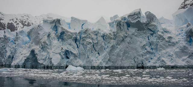 ... Paradise Harbour, penisola antartica (03) ...