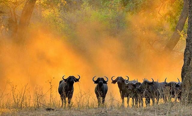 Zimbabwe, spirits of darkness 2