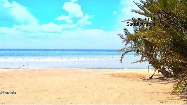 5118 7 reasons to visit Umluj Beach – The Maldives of Saudi Arabia 02