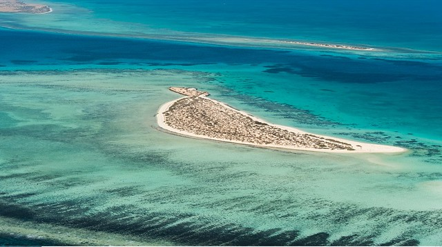 5118 7 reasons to visit Umluj Beach – The Maldives of Saudi Arabia 01
