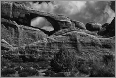 Arch & Bush By John Emmel Award & POM Monochrome Prints Apr. 2019