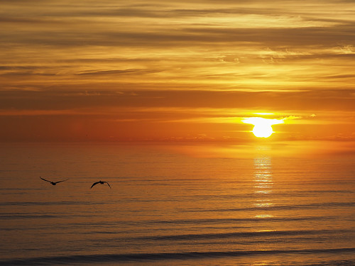 newsmyrnabeach florida sunrise beach ocean atlanticocean atlantic