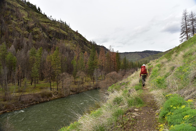 Wenaha River Trail
