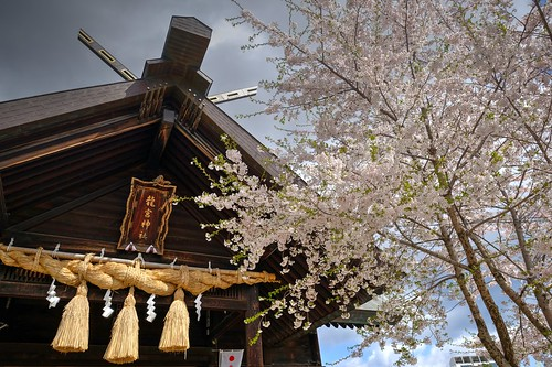 02-05-2019 Ryugu Jinjya Shrine, Otaru (8)
