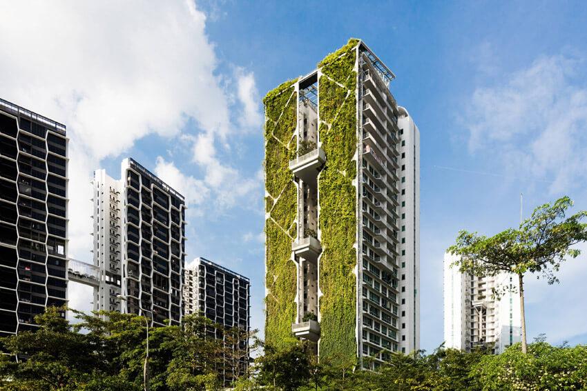 Ảnh thực tế dự án Tree House tại singapore đạt kỷ lục Guinness về bức tường cây xanh lớn nhất.