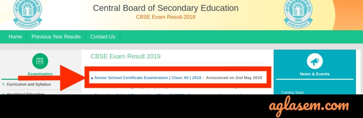CBSE 12 Result 2019 Out; Topper Hansika and Karishma Got 499 / 500