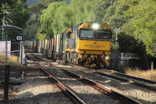 4MP5 at millswood NR26, NR21, G537