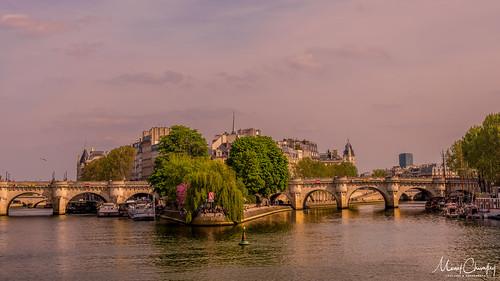 Square du Vert Galant depuis la Seine
